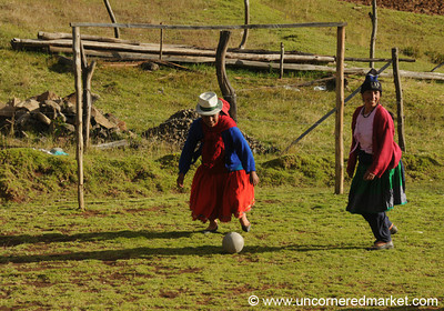 Pick Up Soccer Game with Ecuadorian Microcredit Group