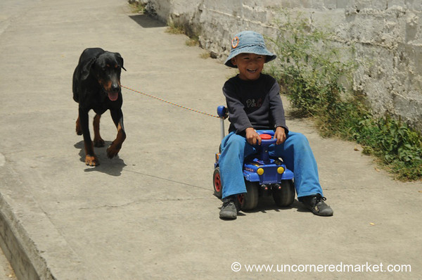 Taking the Dog for a Ride - Vilcabamba, Ecuador