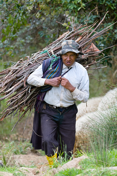 Herder with firewood.