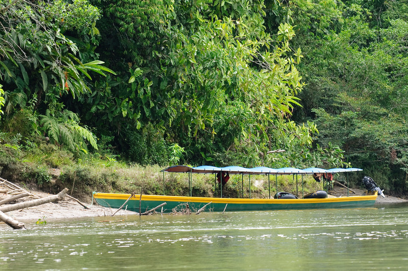 Modern Napo River Transport