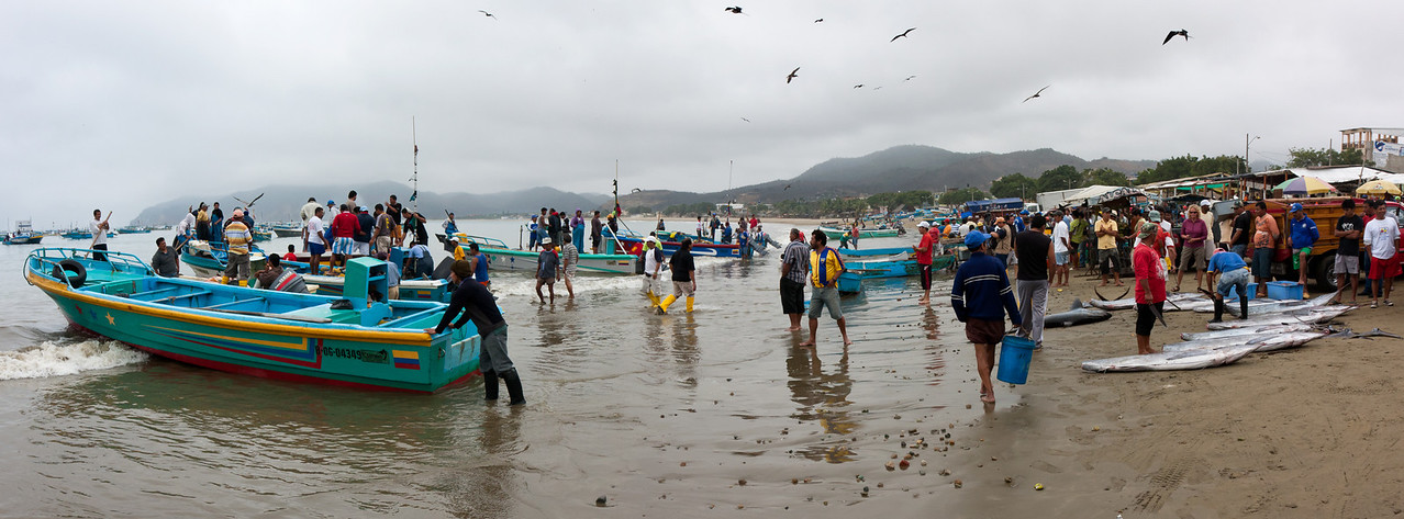 The scene of the daily unloading and processing of fish on the town's beach.<br /> <br /> This is a 3-shot panorama stitched together in CS5.<br /> <br /> Location: Puerto Lopez, Ecuador<br /> <br /> Lens used: 17-55mm f2.8 IS