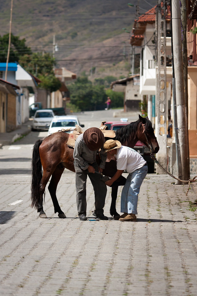 Not quite a one horse town, but close.<br /> <br /> Location: Vilcabamba, Ecuador<br /> <br /> Lens used: 100-400mm f4.5-5.6 IS