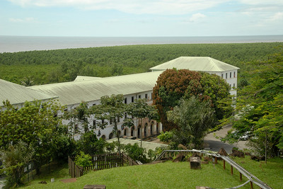 The ocean used to be right in front of this building, but the mangroves have taken over...