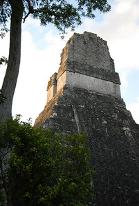 The Mayan Ruins of Tikal in Guatemala...