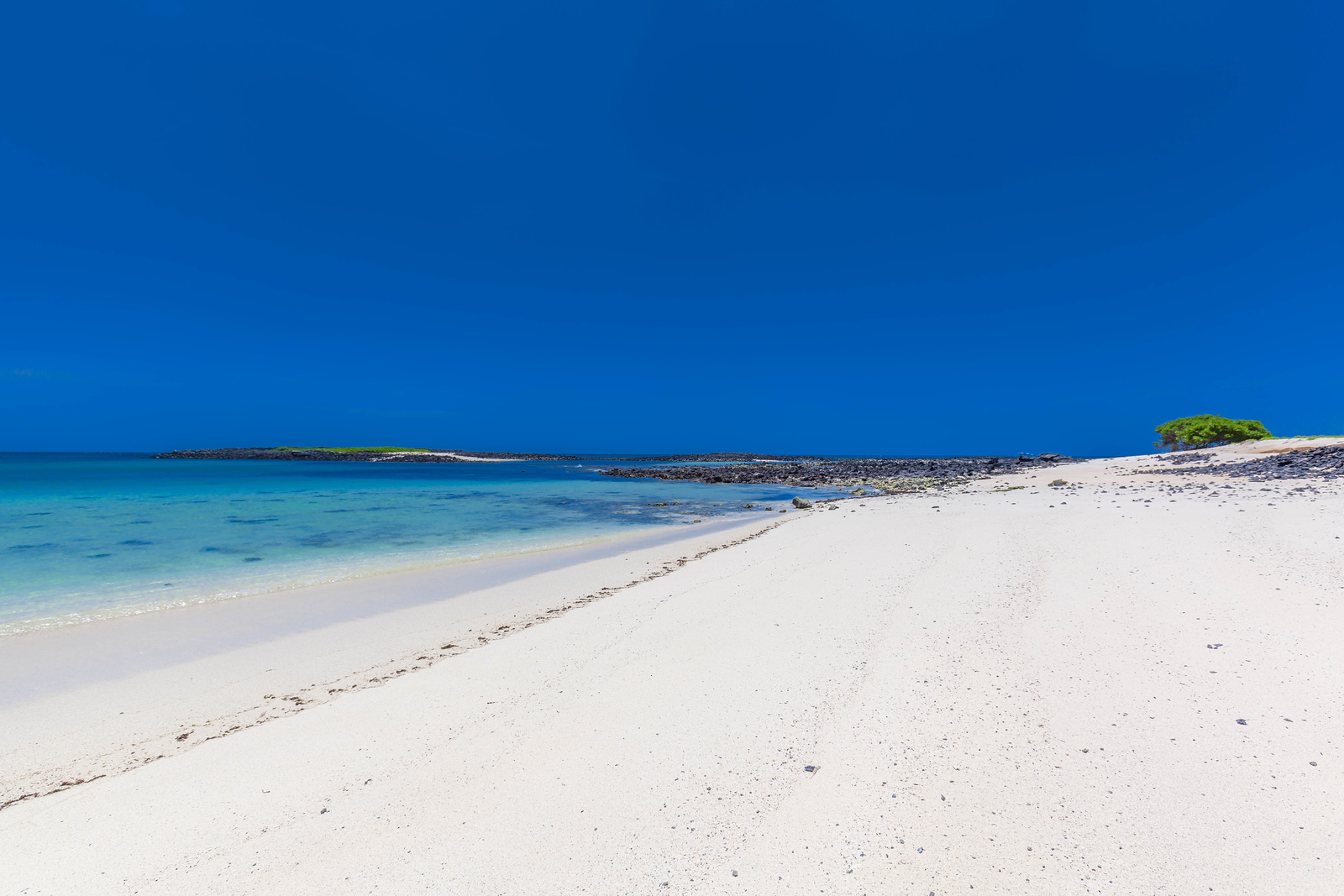 tropical vacations the galapagos islands