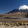 Volcan Parinacota, 20,800 feet.