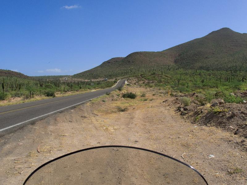 Baja Green Hills