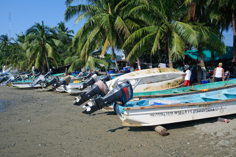 Zihua Fishing Fleet