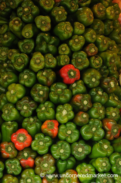 The Pepper Pack and the Odd Man Out - Asuncion, Paraguay