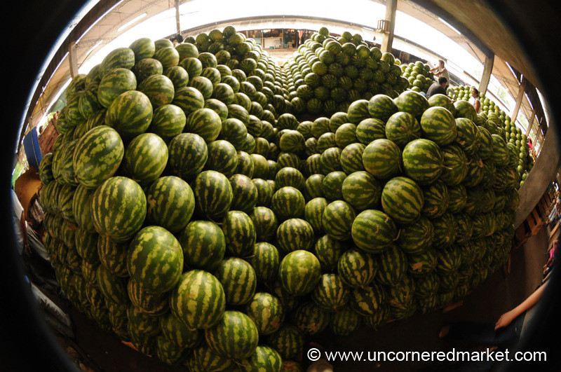 Escher Watermelon Fisheye - Asuncion, Paraguay