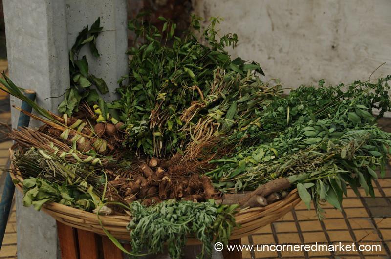Herbs for Terere - Asuncion, Paraguay