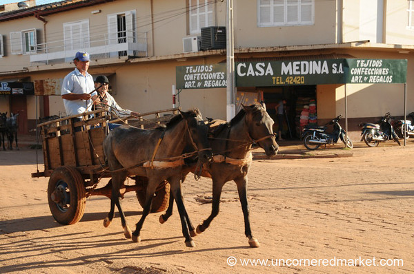 Horses Still Used for Transport - Concepcion, Paraguay