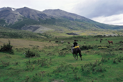 Trail rider. Torres del Paine National Park, Patagonia, Chile