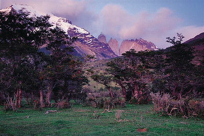 Morning light from Hosteria las Torres. Torres del Paine National Park, Patagonia, Chile