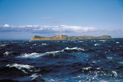 Isla Magdalena Natural Monument.