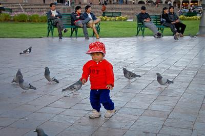 Chasing pigeons...