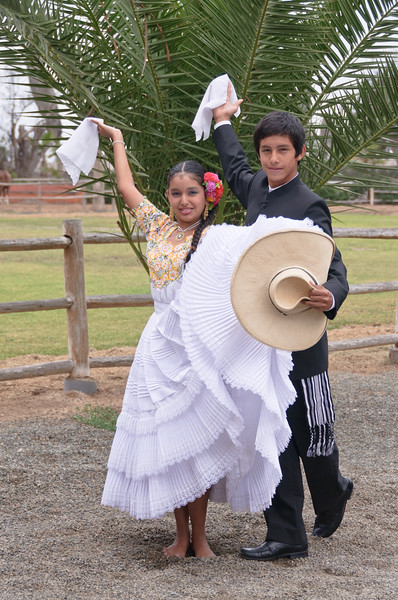 Dancers, Peruvian Horse Ranch