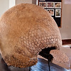 Pikillaqta<br /> The gliptodonte was armored from head to foot, including a small cap for its head and a tube of plates that covered its tail.  The cap armor was essential as the gliptodonte was not able to retract its head inside its body armor for protection.  That an armor of this size was found intact is amazing.