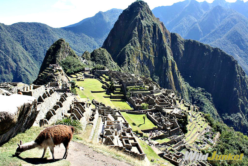 How to Get to Machu Picchu — 2020 Detailed Guide