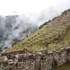 Machu Picchu - Agricultural Terraces