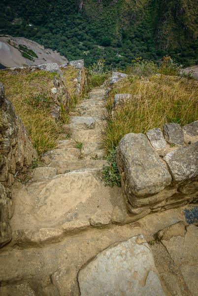 034_2012_Machu_Picchu--5248