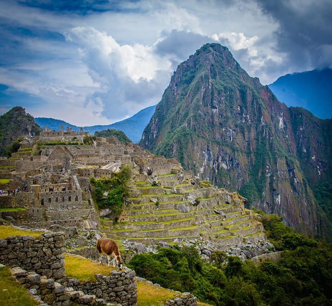 018_2012_Machu_Picchu--5160