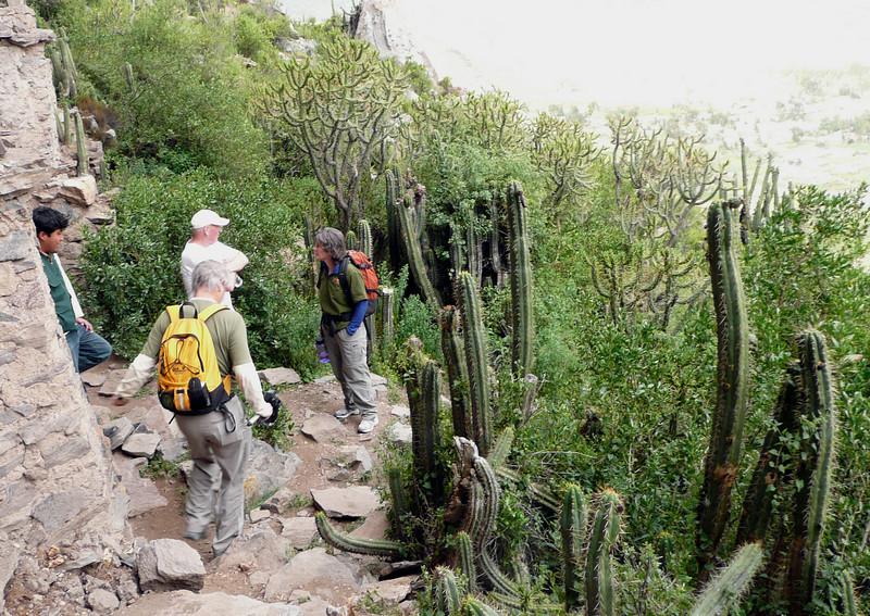 Hiking around Coporaque