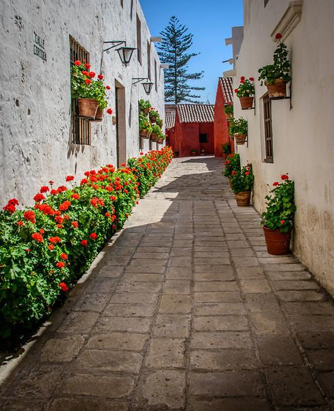 019_2012_Arequipa_Peru--3336
