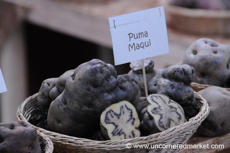 Special Kind of Potato - Mistura Gastronomy Festival in Lima, Peru