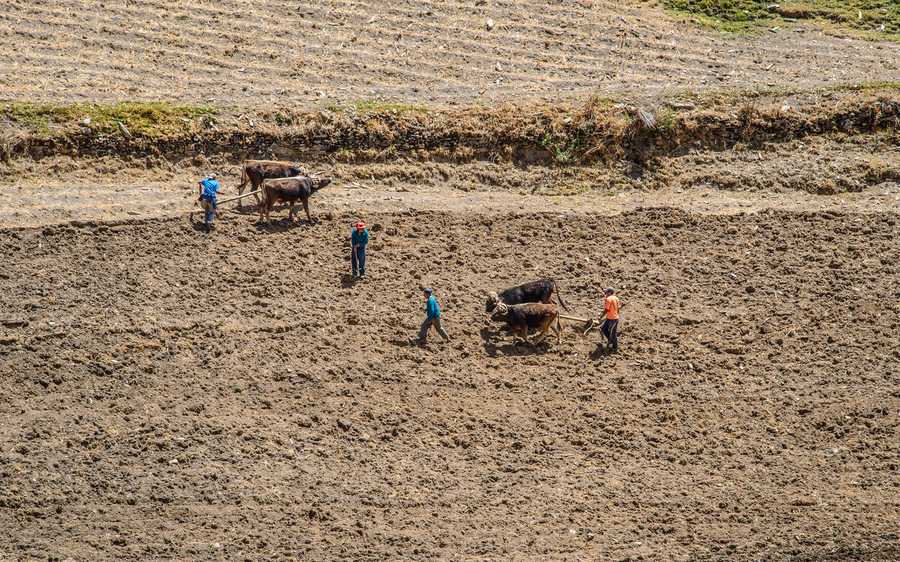 048_2012_Sacred_Valley--4601