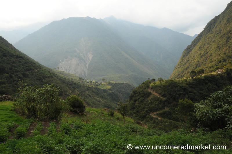 Lush Valleys - Day 3 of Salkantay Trek, Peru