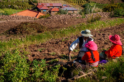 Touching colorful rural life scence at Taquille Island.