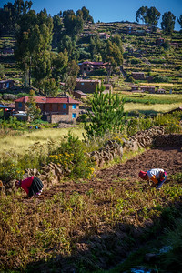 Colorful rural life scence at Taquille Island.