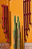 Cactus in museum courtyard, Lima, Peru