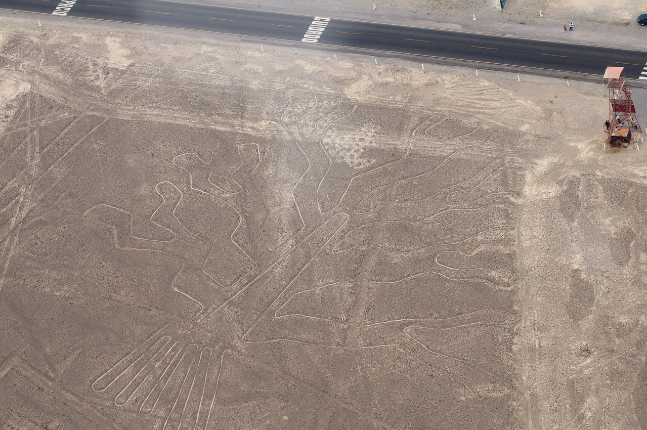 The Huarango Tree – Nazca Lines