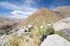 Kallimarca and Sabancaya Volcano, Cobanaconde, Peru.