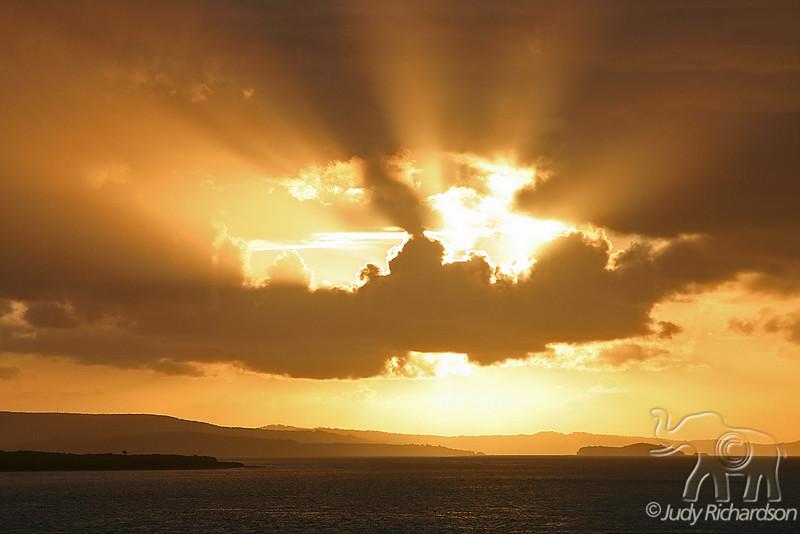 Rays of Morning Light