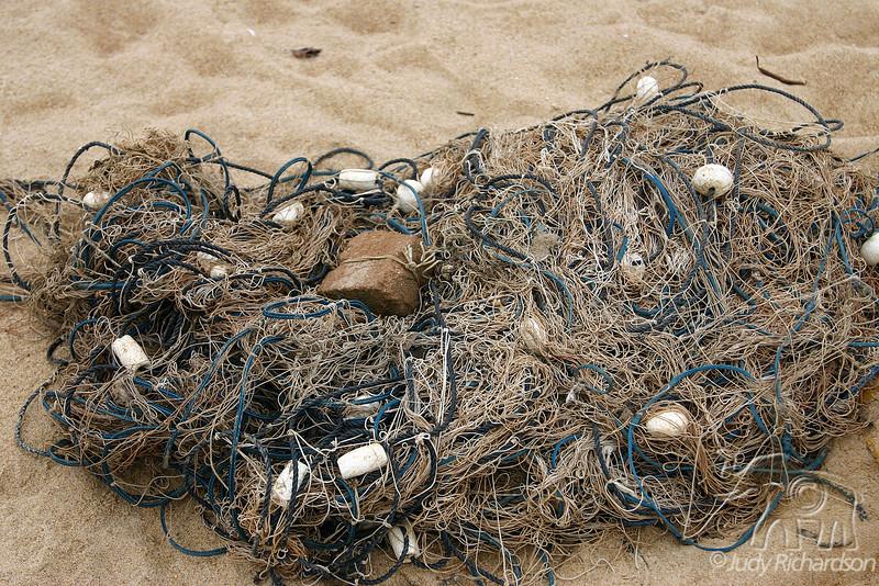 Bundle of Netting