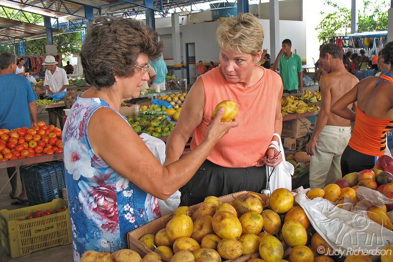 Picking the Fruit!