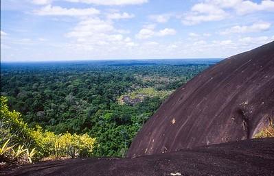 Central Suriname Nature Reserve - Voltzberg view #2