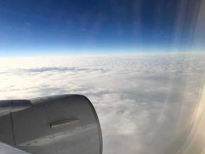 airplane wing photo