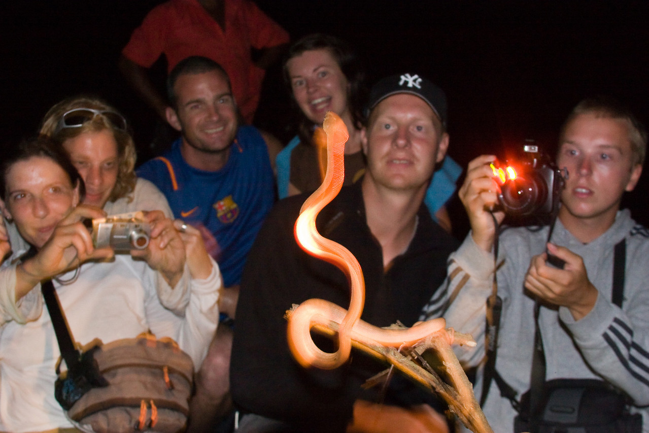 European tourists encountering the jungle. (Left to right, these pairs are Dutch, Norwegian and Flemish).  We were all in a small boat trawling narrow waterways at night looking for critters. We found a small snake on a branch. As I was sitting up front, cross-legged on the bow, I was in position to click the looks on everybody's face when we brought the snake on board.<br /> <br /> Technically, one could pick this picture apart.  I know that I need to work on my pitch-black/flash photography.  But I posted it 'cause it's fun and it's the type of photo I probably wouldn't have ever shot had the circumstances been different.<br /> <br /> Location: Lago de Maracaibo, Venezuela<br /> <br /> Lens used: 28-135mm f3.5-5.6 IS
