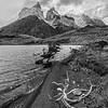 Cuernos del Paine and Lakeshore