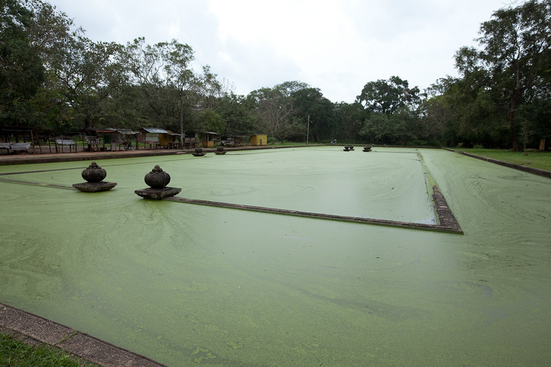 Twin Ponds