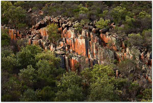 Organ Pipes Gawler NP