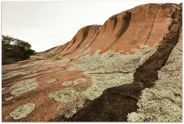 Textures Across the Rock