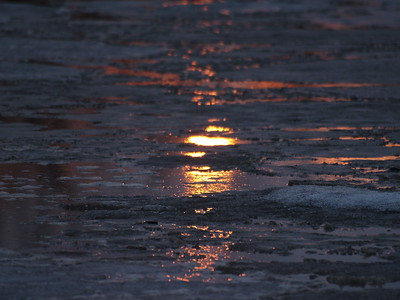 The setting sun, reflected through and off the ice like cloud cover, brings warmth color to another otherwise still chilled landscape.