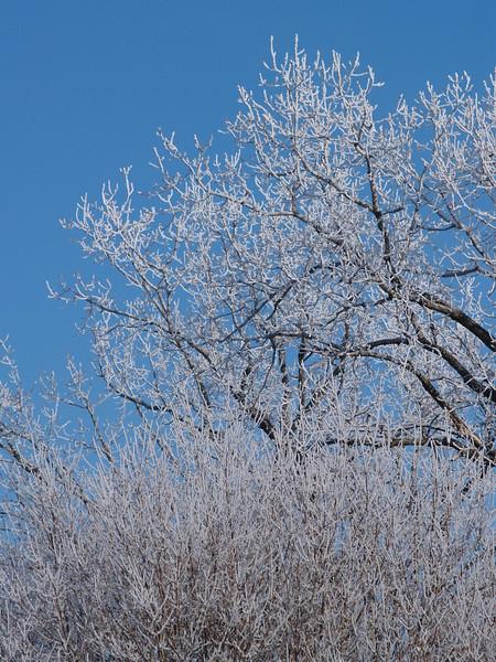 February skies 031.JPG