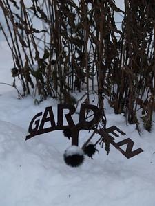 winter garden (November 2008)