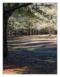 Greenwood State Park South Carolina